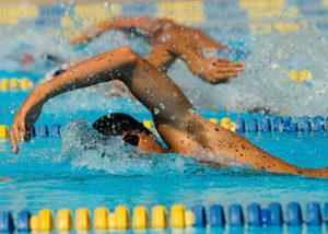 競泳の画像